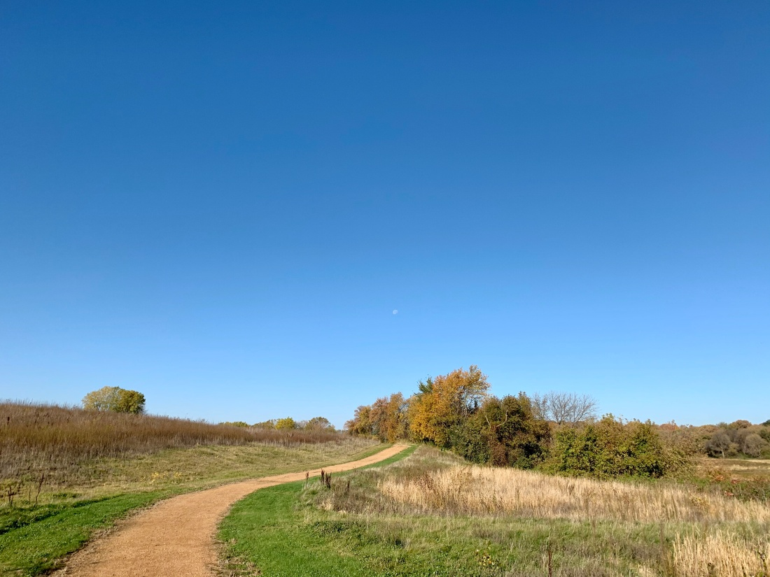 Gravel trail in nature
